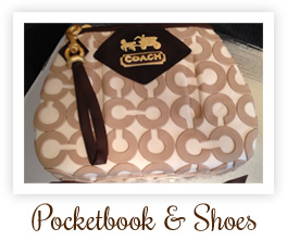 Pocketbook & Shoes Collection